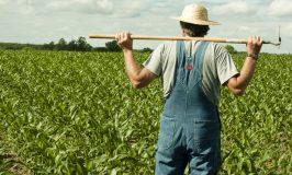 Ο γεωργός